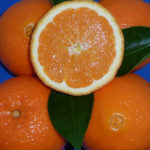 arancio washington navel (citrus sinensis) copia