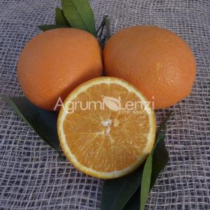 arancio newhall15012014 010