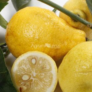 Limone Peretto