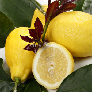 limone-carrubaro-citrus-lemon