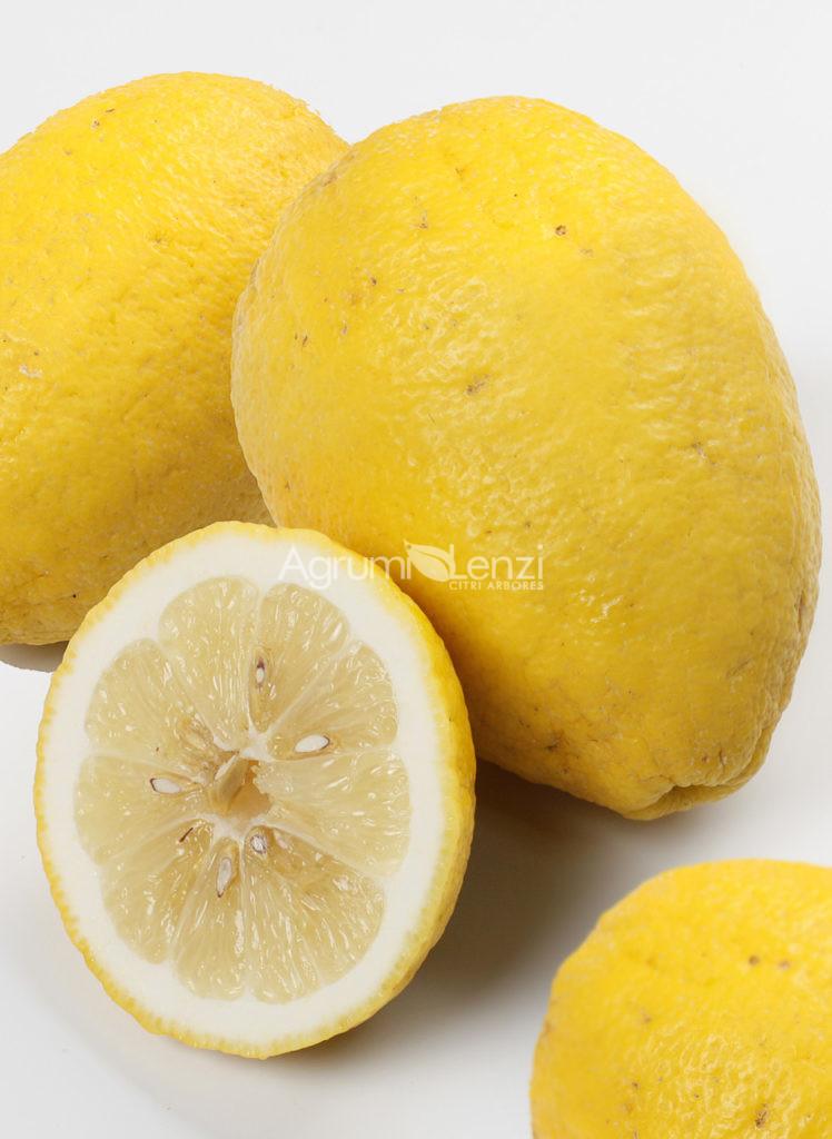 Limone del Borneo