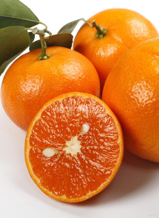 Mandarino Murcott