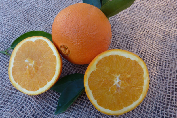Arancio Washington Navel